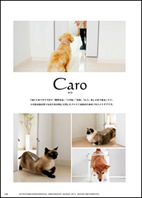 ペットドア Caro(カロ)