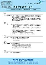 カチオンスターC1 JIS A 6916規格適合 <一材型カチオン性ポリマーセメント系補修材>