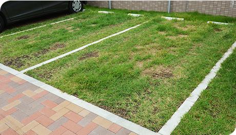 駐車場の緑化も多彩にご用意しております!