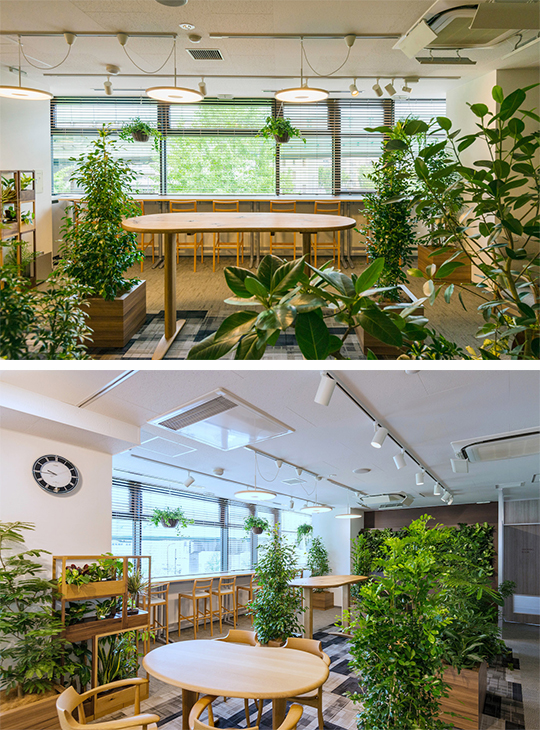 深呼吸できる、緑あふれるオフィス『ヴェルデニア』
