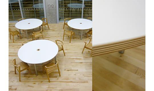北海道産シラカバ間伐材を利用した合板 ーecoシラ合板ー