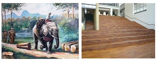 合法伐採木材を有効的に活用している(クリーンウッド法)木材関連事業者に認定されました。