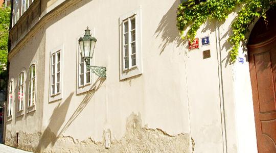 本物の自然素材から作られた健康塗り壁『PAPRESA』