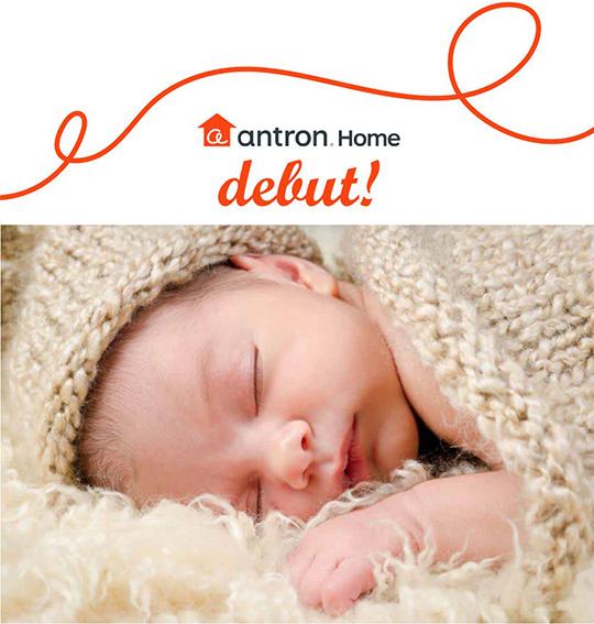 プロの素材を使用した新しい家庭用カーペットブランド誕生!