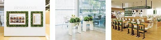 「店舗・商業空間デザイン展」にグリーンモードを出展