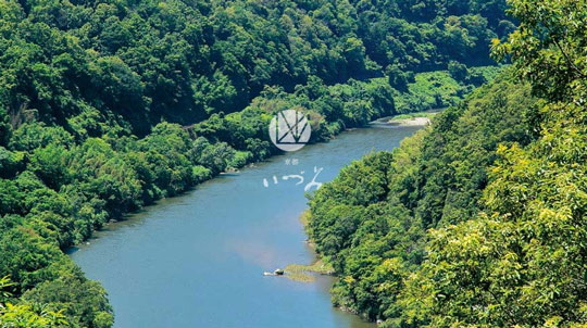 京都IZUMIは木津川の豊かな自然環境のもとでつくられます。