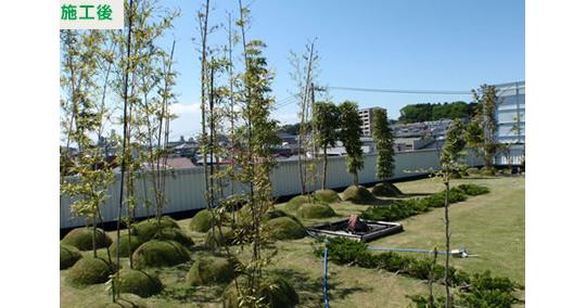中低木も植栽できる薄層緑化システム