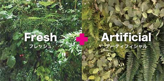 屋内緑化の可能性を広げるアーティフィシャルグリーン