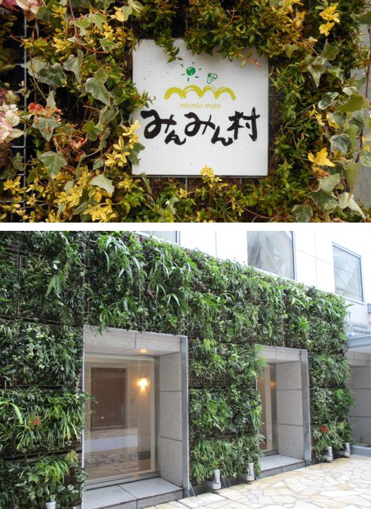 みんみん村のデザインフリーな壁面緑化をご紹介