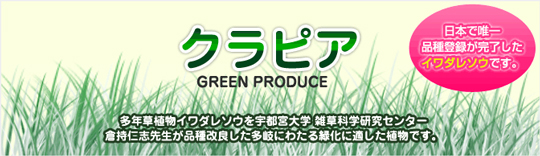 日本で唯一品種登録が完了したイワダレソウで緑化!
