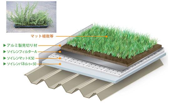 植物の視点から開発された軽量緑化工法「スーパーソイレン工法」
