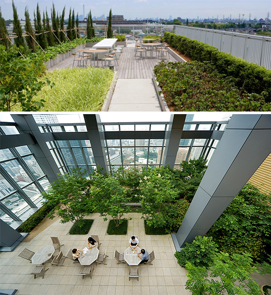 TLC緑化システムで屋上に生まれる癒し空間