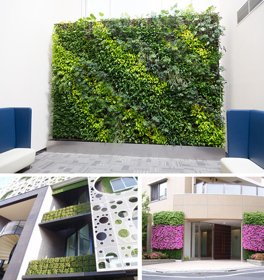 杉孝メトログリーンの「壁面緑化」は都会の喧騒に潤いを与えてくれます!