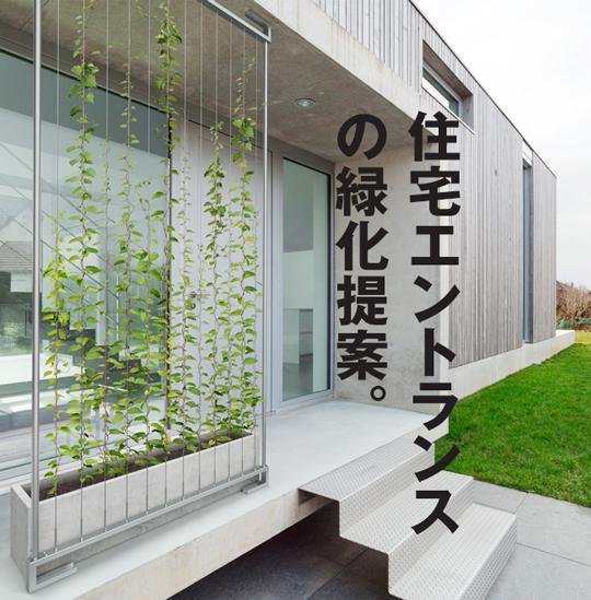 住宅エントランスの緑化提案【ワイヤーパーテーション】