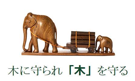ミハマ50周年記念セールを開催いたします!