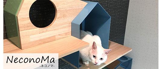 ヒトとネコの新しい暮らしをご提案『NeconoMa(ネコノマ)』新発売!