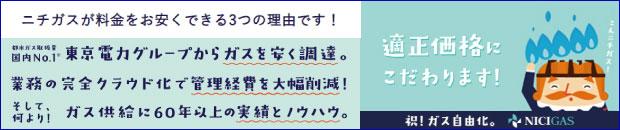 日本瓦斯株式会社(ニチガス)[暖炉・ストーブ]