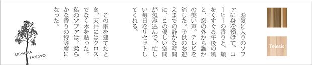 植村産業株式会社[天井用パネル・化粧板・膜]