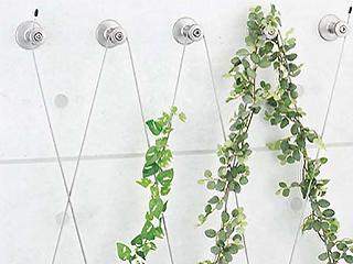 壁面緑化ワイヤーブラケットシステム WB-C