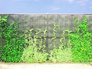 景観・環境対応 防音めかくし塀【緑化型防音ウォール】