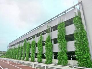 壁面緑化用ワイヤー【ツルパワーワイヤー】