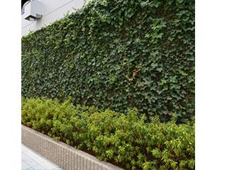 壁面緑化【D's エコロパネル】