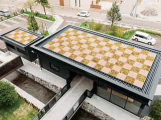 屋上緑化【D's グリーンビズ Roof】