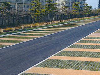 駐車場緑化【D's グリーンパーキング(ブロックタイプ)】