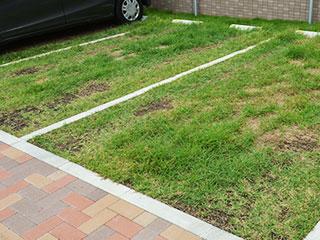 駐車場緑化【D's グリーンパーキング(芝タイプ)】
