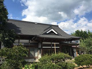 ストーンチップ鋼板屋根材シンプルなシルエット【ディーズ ディプロマットスター】