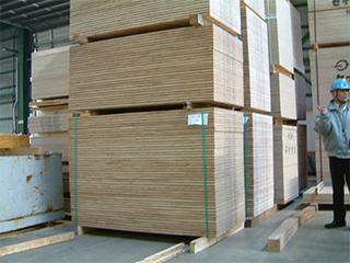 乾式防腐・防蟻処理構造用合板