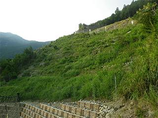 ポリソイル緑化工法(治山事例)