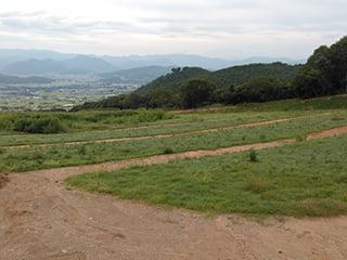 ポリソイル緑化工法(農地整備事例)