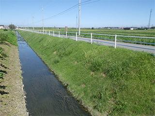ポリソイル緑化工法(道路事例)