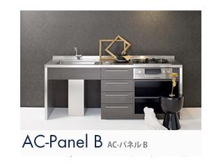 AC-Panel B