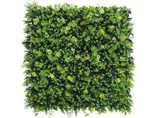人工観葉植物(フェイクグリーン)