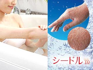 シードル 炭酸泉【ホテル・マンション専用】