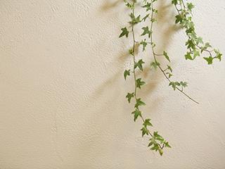自然素材100%内装塗り壁材 EM珪藻土