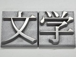 nano MATERIAシリーズ「META-CAST sign(メタキャストサイン)」