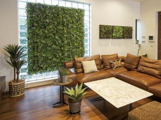Indoor Vert <br> (インドア ヴェール)
