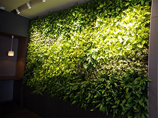 SR-P パネル式 壁面緑化