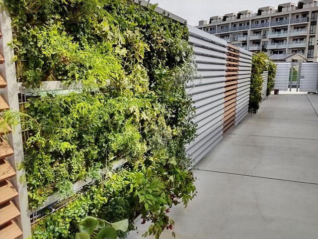 SR-Pm 壁面緑化