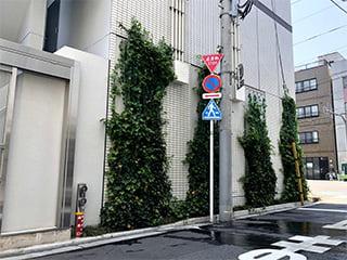 アルティマ壁面緑化システム 緑化用「スパイラルワイヤー」使用