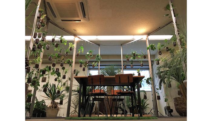 屋内緑化&空間演出 アルティマ グリューネ・フェンスター
