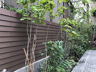 エコ素材の人工木はフェンスにも最適