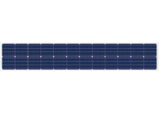 マクサ単結晶24セル【WS-115M-CI24】営農用