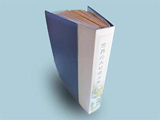 ツキ板見本帳【世界の木材標本集】
